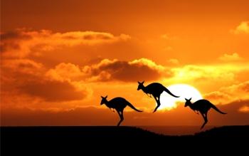 Ausztrália tetőre telepített napelem